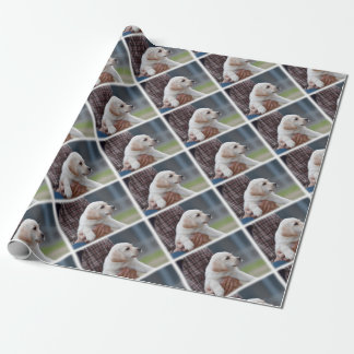 Lab Looking Wrapping Paper