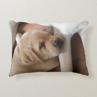 Lab Love Pillow