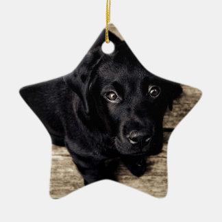 lab puppy ceramic star ornament