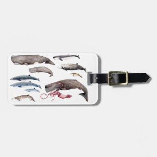 Label: Cachalote, zifios and whales Luggage Tag
