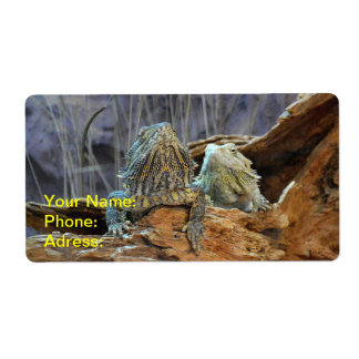 Label with two curious lizards