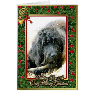 Labradoodle Dog Blank Christmas Card