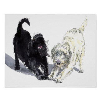 Labradoodle Doodle Poster