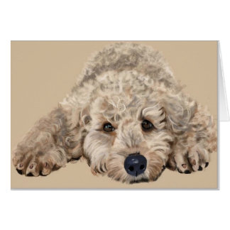 Labradoodle Puppy Card