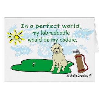 LabradoodleYellow Card