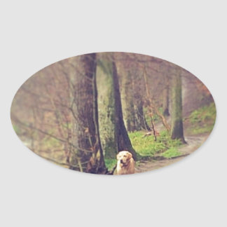 Labrador and his Regal Pose Oval Sticker