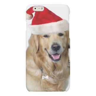 Labrador christmas-santa claus dog-santa dog-pet