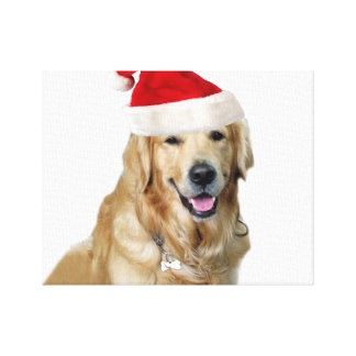 Labrador christmas-santa claus dog-santa dog-pet canvas print