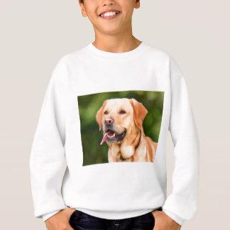 Labrador Dog Sweatshirt