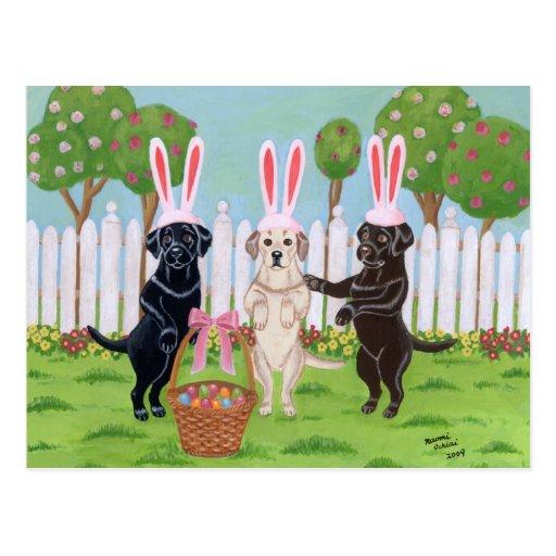 Labrador Easter Bunnies!! Post Cards