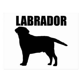 Labrador Gifts! Postcard