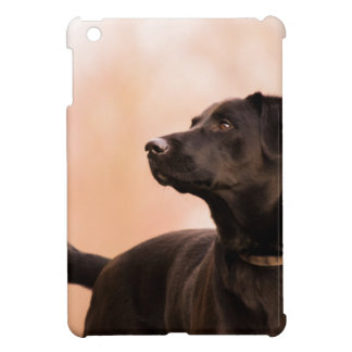 labrador iPad mini cover