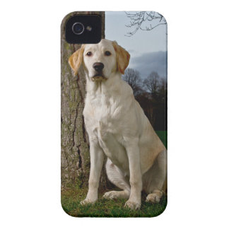 Labrador iPhone 4/4S Case Mate Barely There
