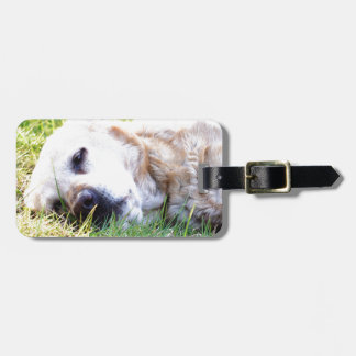 Labrador Luggage Tag