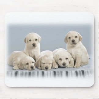 Labrador puppies mouse pad
