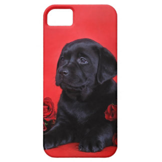 Labrador puppy and roses iPhone 5 case