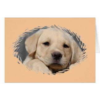 labrador puppy card