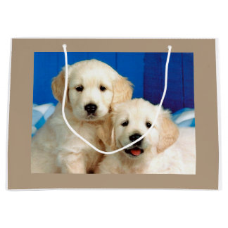 Labrador pups large gift bag