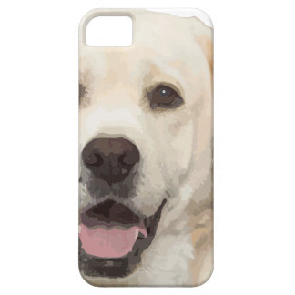 Labrador retriever 1 iPhone 5 cover