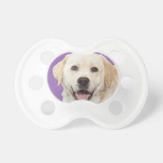 Labrador retriever 1 pacifier