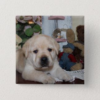 Labrador Retriever 2 Inch Square Button