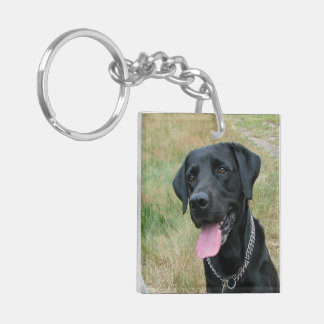 Labrador Retriever dog black beautiful photo Double-Sided Square Acrylic Keychain