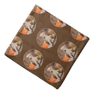 Labrador Retriever Dog & Pumpkins Brown Do-rags
