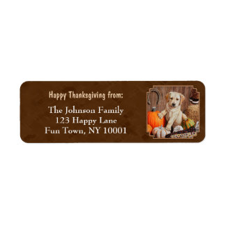 Labrador Retriever Dog & Pumpkins Brown Return Address Label