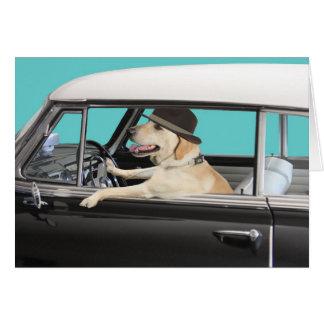 Labrador Retriever Driving Classic Car Card