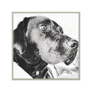 Labrador Retriever Head in Profile Sketch Canvas Print