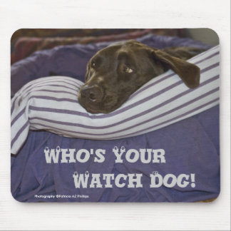 Labrador Retriever In Bed Mouse Pad