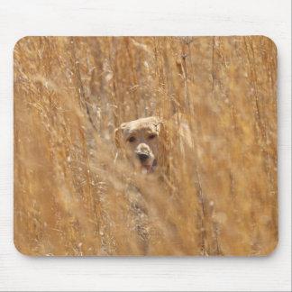 Labrador retriever jaune camouflé tapis de souris