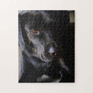 Labrador Retriever Jigsaw Puzzle