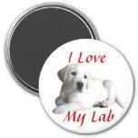Labrador Retriever Love Magnet