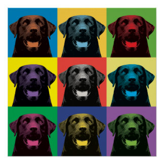 Labrador Retriever Pop-Art Poster