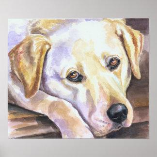 Labrador Retriever Print