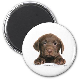 Labrador Retriever puppy 9Y270D-050 Magnet