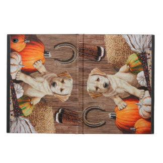 Labrador Retriever Puppy and Pumpkins