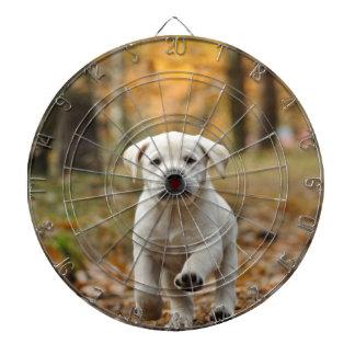 Labrador retriever puppy dartboard