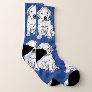 Labrador Retriever puppy  dog socks