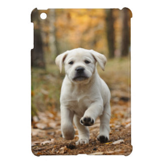 Labrador retriever puppy iPad mini cases