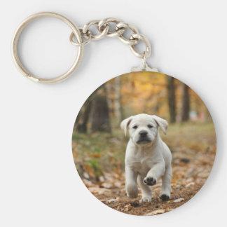 Labrador retriever puppy keychain