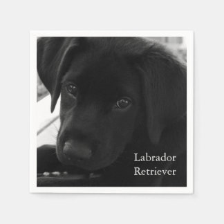 Labrador Retriever Puppy Paper Napkins