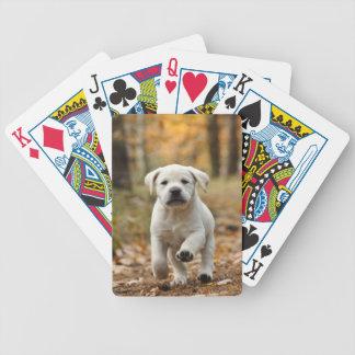 Labrador retriever puppy poker deck