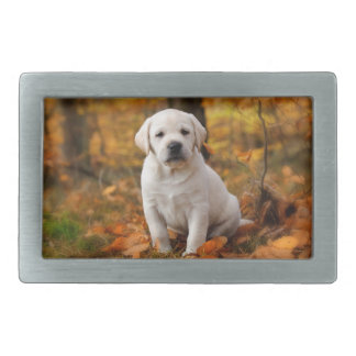 Labrador retriever puppy rectangular belt buckles