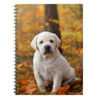 Labrador retriever puppy spiral notebook