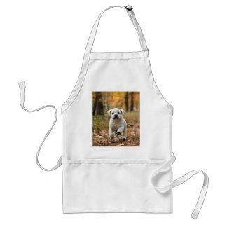Labrador retriever puppy standard apron