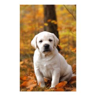 Labrador retriever puppy stationery