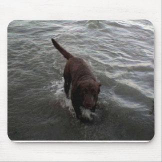 Labrador Retriever swimming Mouse Pad