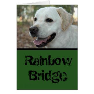 Labrador Retriever sympathy card3 Card